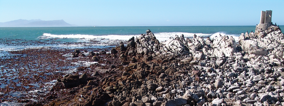 photo Betty's Bay South Africa